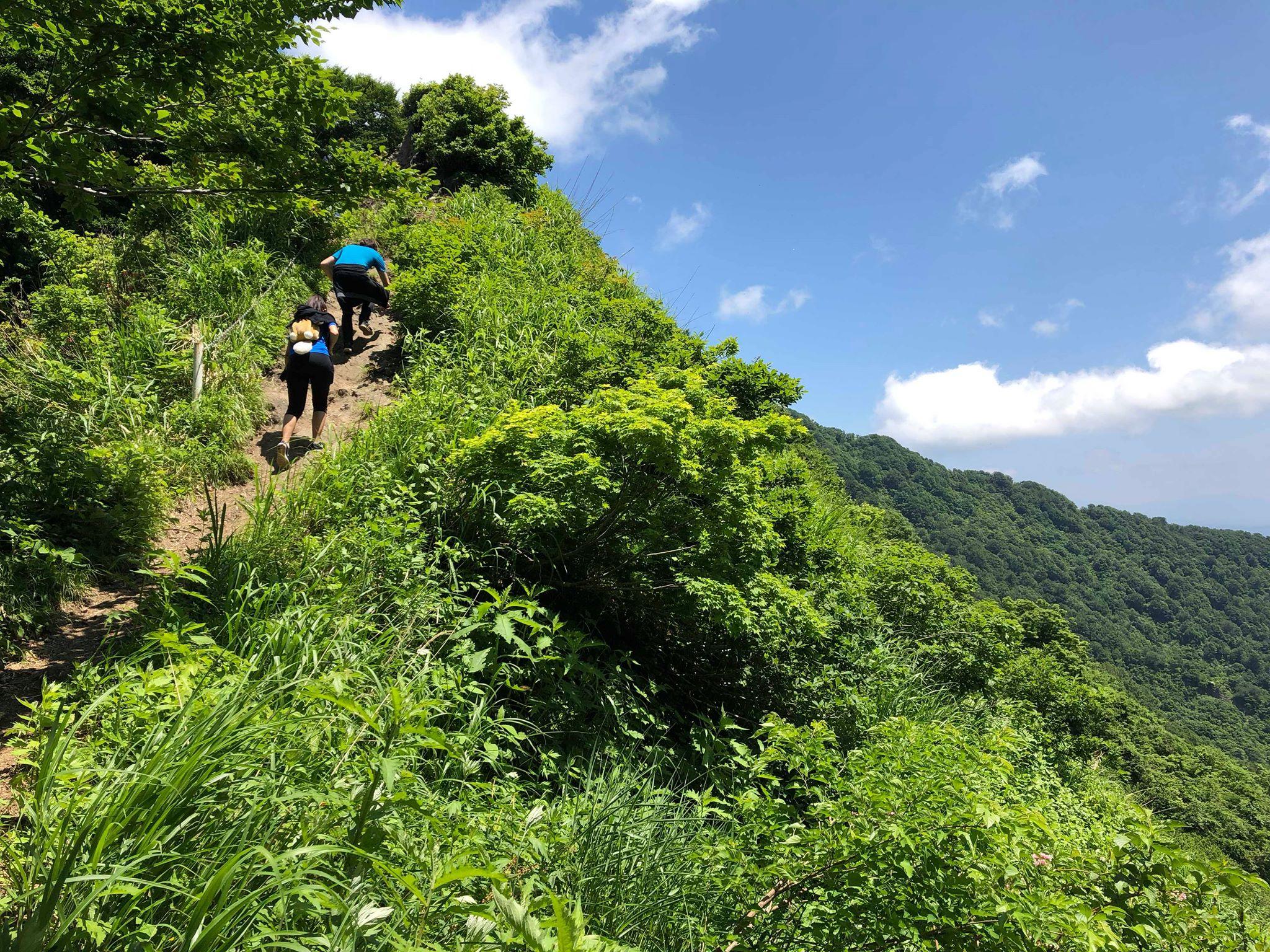 Niigata AJET
